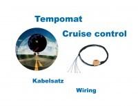 Kabelsatz GRA (Tempomat) für VW Polo 9N, Seat Ibiza 6L